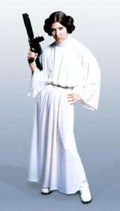 Princess Leia Armed and Sexy